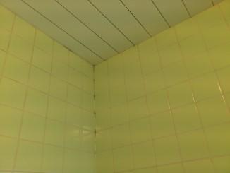 お風呂の目地 カビ