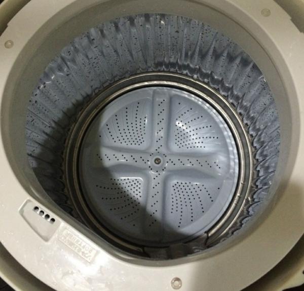 洗濯機 掃除 分解