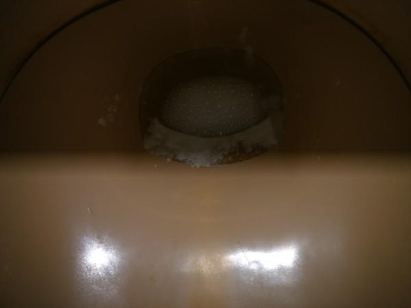 トイレ 掃除 尿石