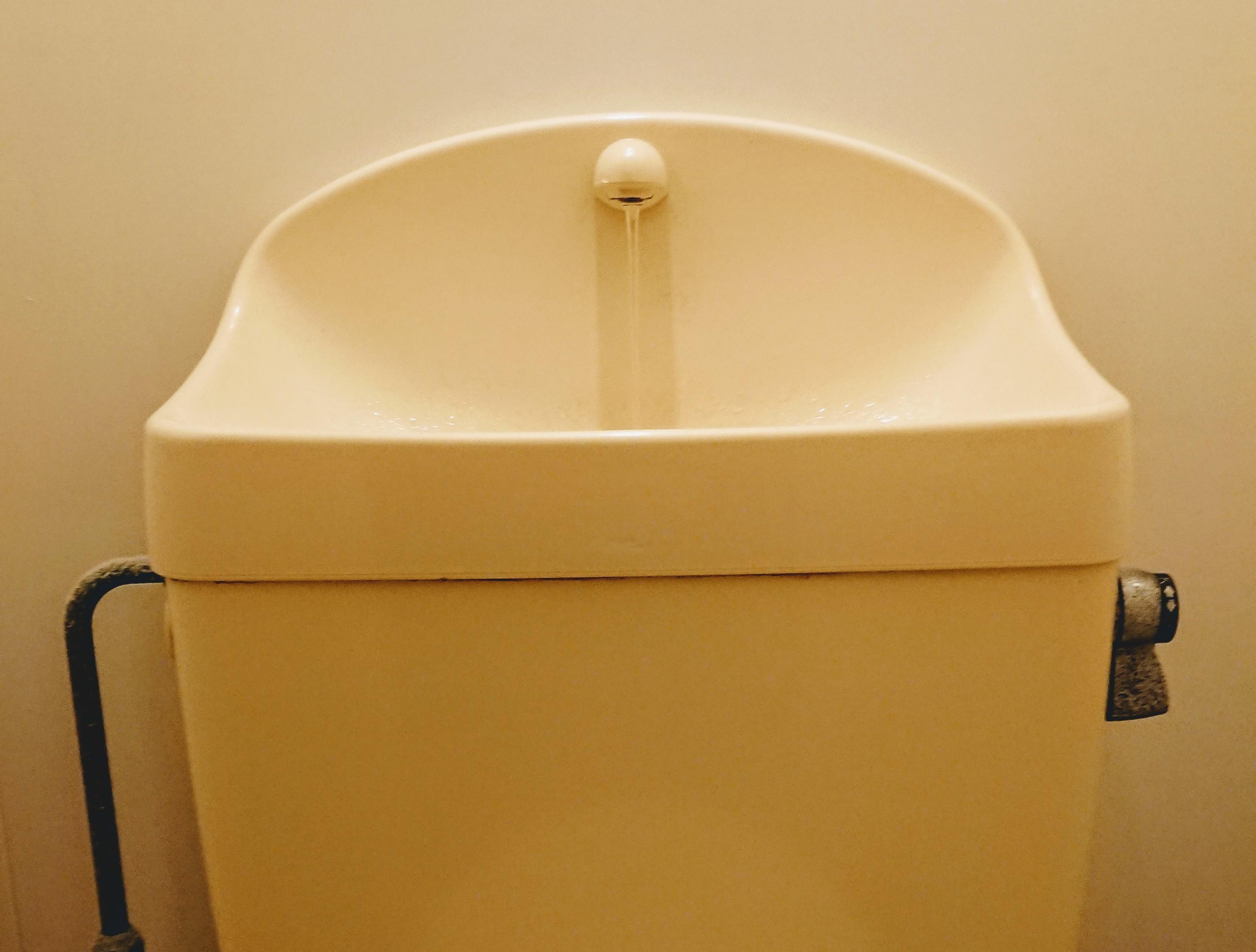トイレタンクの中を掃除しましょう 簡単に汚れを落とせる7つの方法