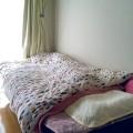 ダニ捕り ベッド